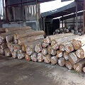 indonesian furniture factory legal certifed wood
